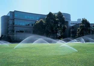 Boring Contractors Irrigation | Commercial Irrigating System
